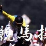 該当馬の2頭に1頭が勝利!極選競馬投資法とニトロワンのコラボ戦術です。