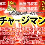 新潟記念は爆走流チャージマンとブログ公開馬券法で馬連的中!